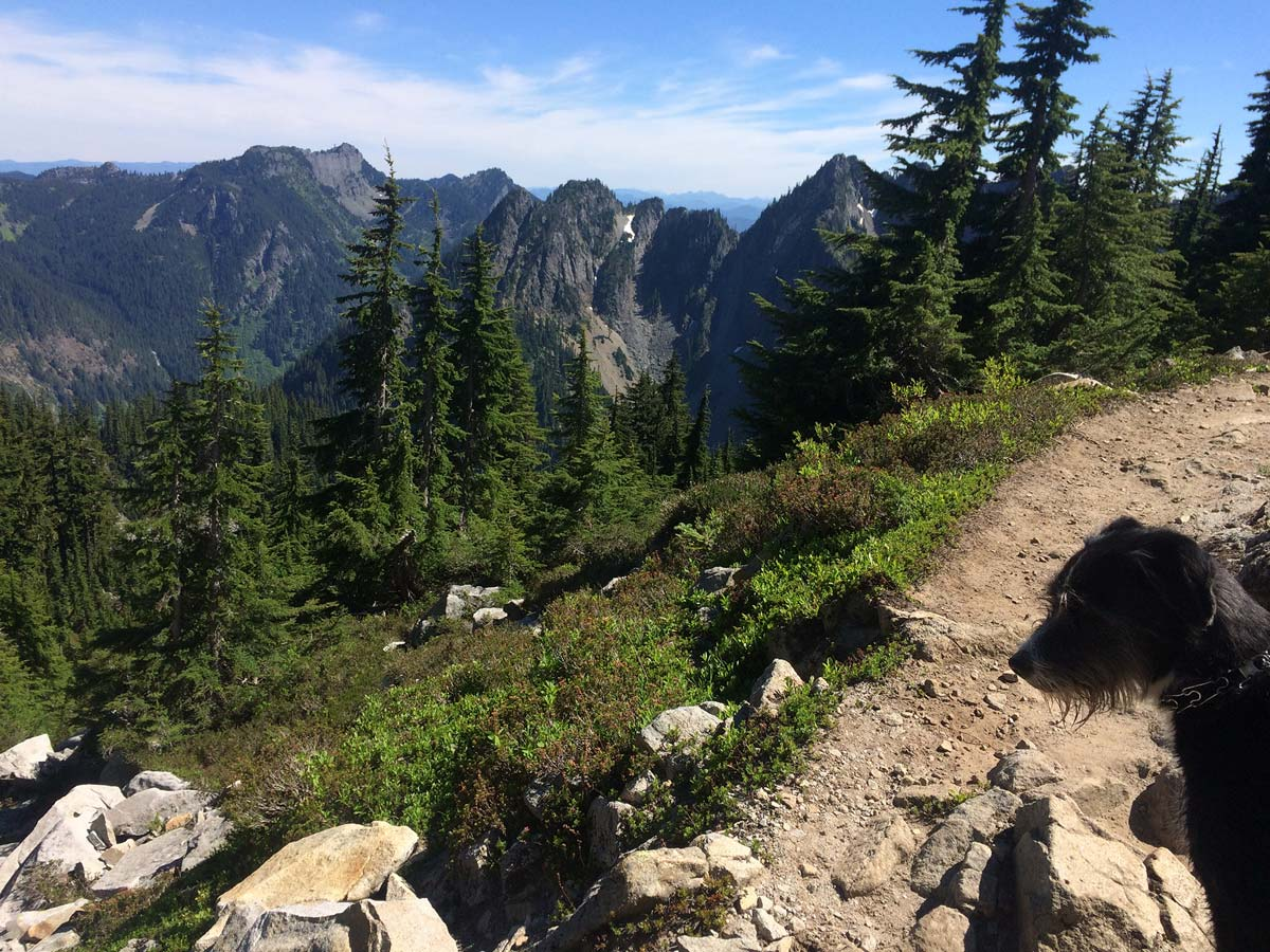 Wally on the Alpine Lakes Wilderness trail